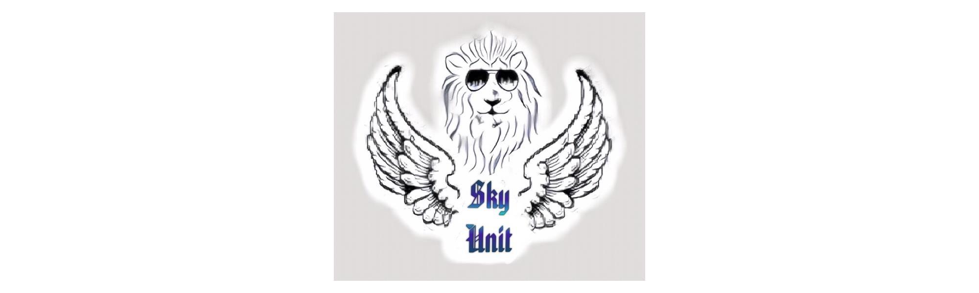SkyUnit